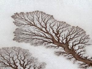 desert river bed